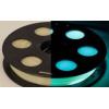 БИРЮЗОВЫЙ PLA Пластик BestFilament для 3D принтеров 0,5кг (1,75мм) СВЕТЯЩИЙСЯ В ТЕМНОТЕ